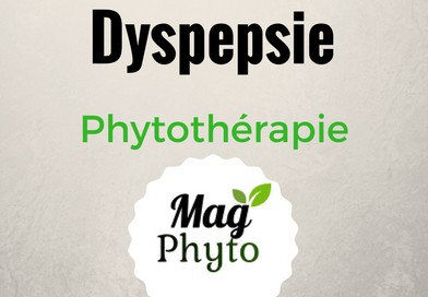 Dyspepsie phytothérapie