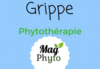 grippe phytomag