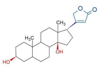 cardénolide