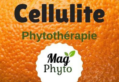 Cellulite phytothérapie