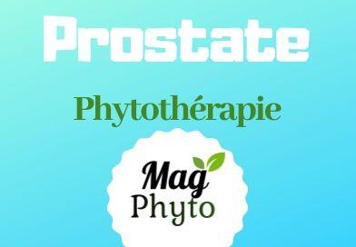 Prostate phytothérapie