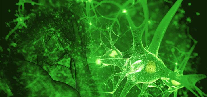 Latest Science Debunks Age Old Marijuana Myths (Again)
