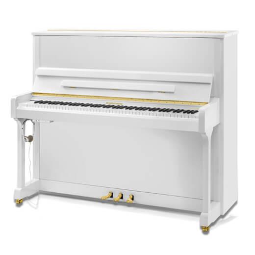 Пианино W.Hoffmann Vision V-126