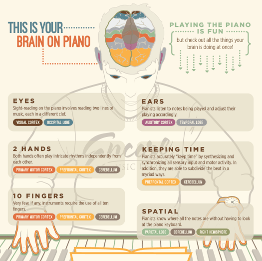 infographic-piano-lessons-are-good-for-you-and-your-brain