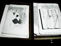 Pia Sommer - Cuadernos 2006 6