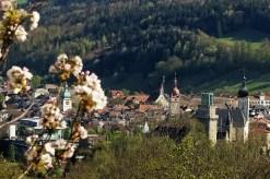 Stadt mit Blüten 1