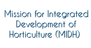 mission-for-integrated-development-of-horticulture-midh