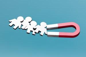 Great lead magnet ideas