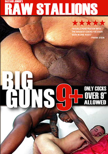 Big Guns 9 Plus cover