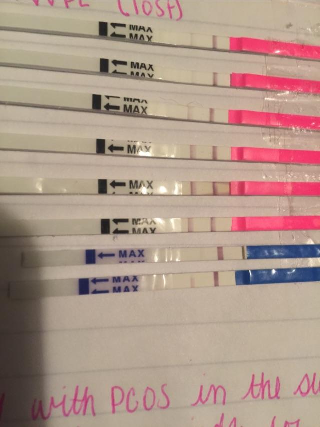 Faint Negative Pregnancy Test Results