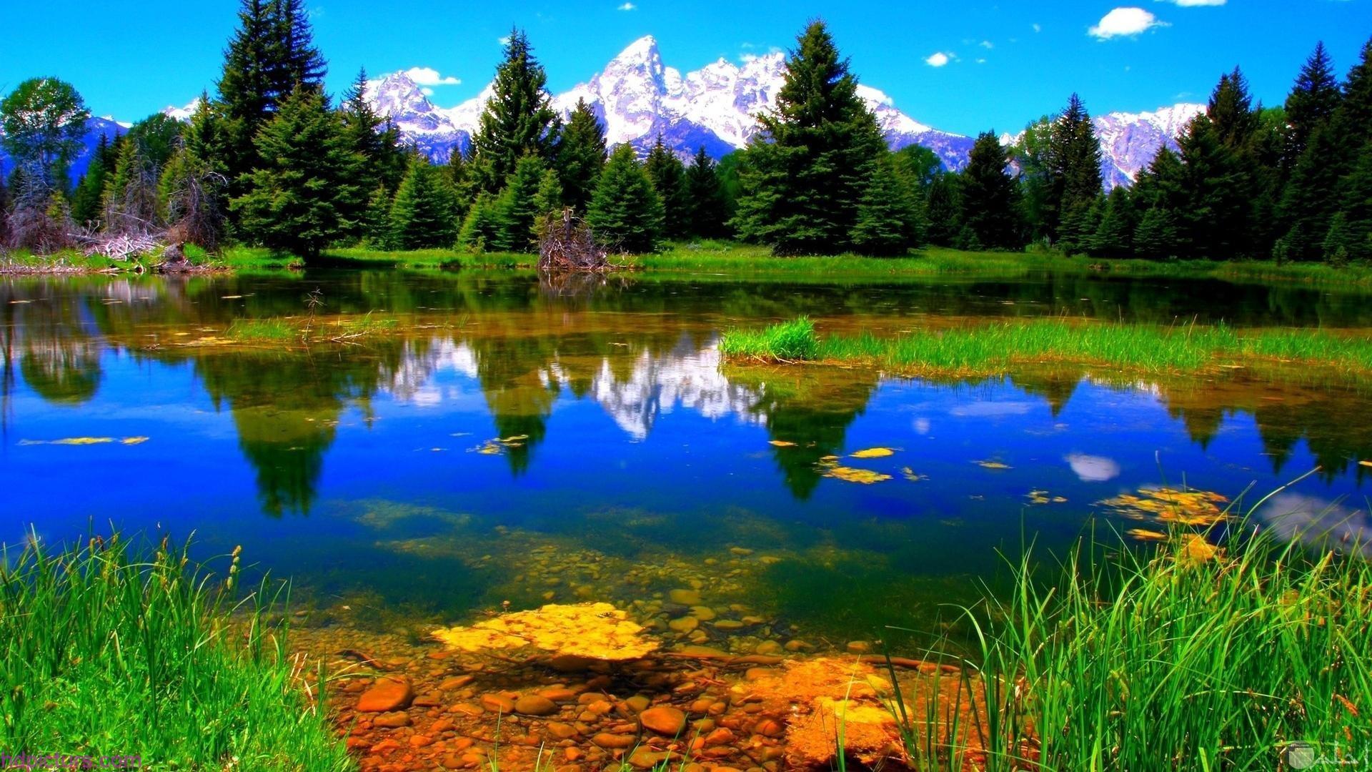 منظر طبيعي خلفيات طبيعة خلابة وساحرة