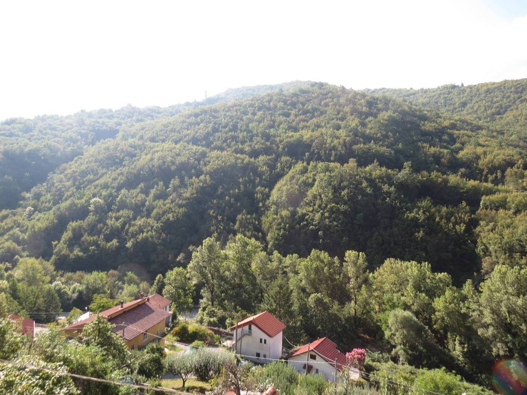 Vendita Casa Indipendente In Località Carsassina 31