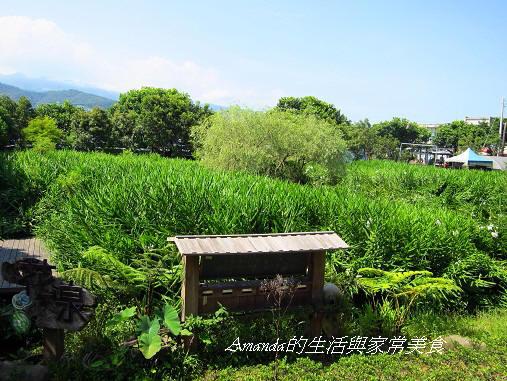 花泉農場-野薑花園