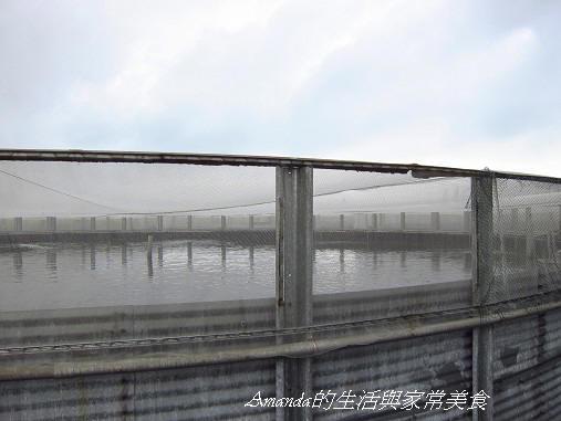 金車水產養殖-大型養殖場