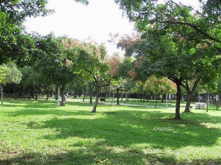 大安森林公園4.JPG