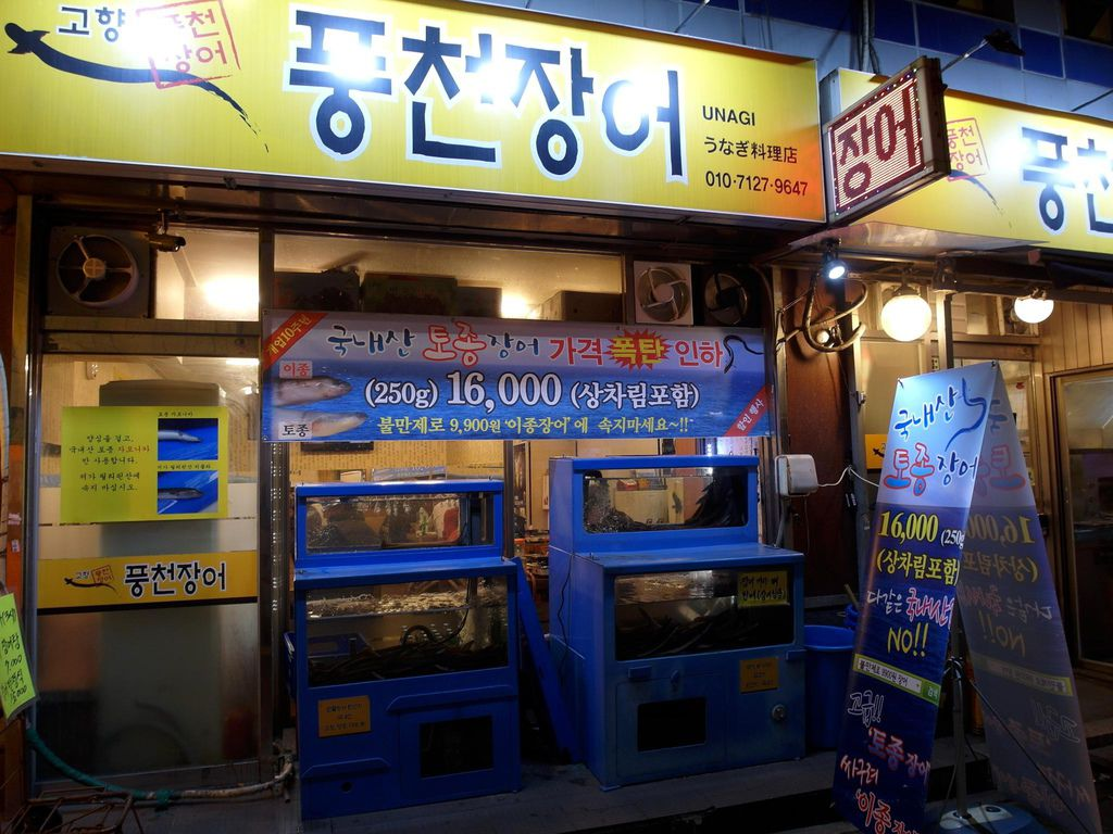 【鐘路/종로 맛집】故鄉豐川鰻魚店고향풍천장어 韓國冬季進補聖品