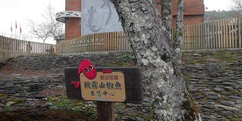 台灣|新竹五峰|【觀霧山椒魚生態中心】觀霧山莊旅遊景點|雪霸國家公園