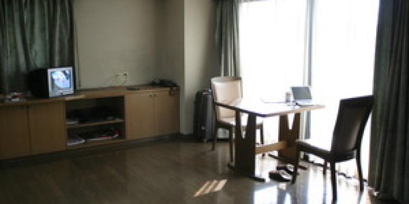 關於 ...寵物與主人的橫濱公寓