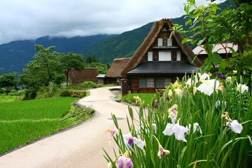 日本真的有夠鳥….真想寫一本關於日本鳥地方的書