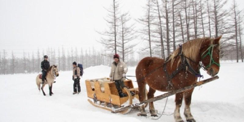 二月的北海道.....漫步在千年之森