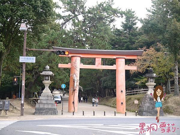 奈良公園-23.jpg