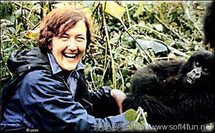 Google 首頁塗鴉:Dian Fossey 美國動物學家 82 歲誕辰 Dian-Fossey-2