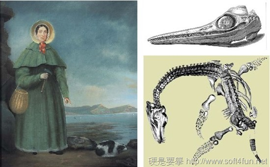 [Google Doodle] Mary Anning 英國古生物學家 215歲誕辰紀念 115_image