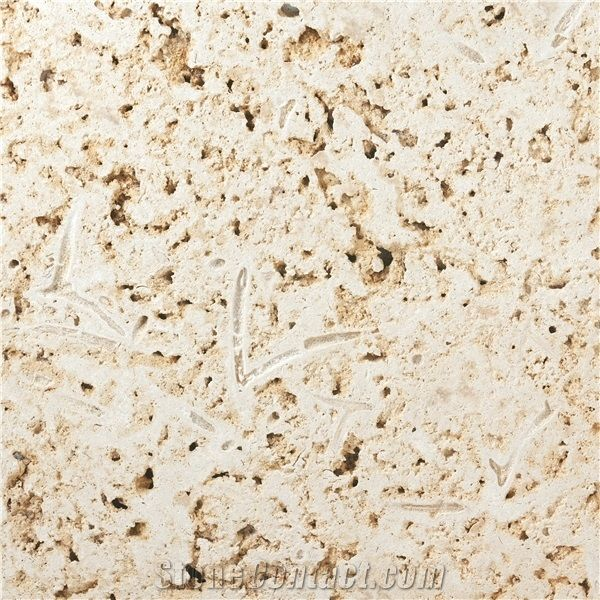 colonial coral stone tiles slabs from