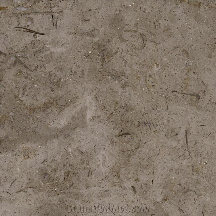 millie brown limestone brown