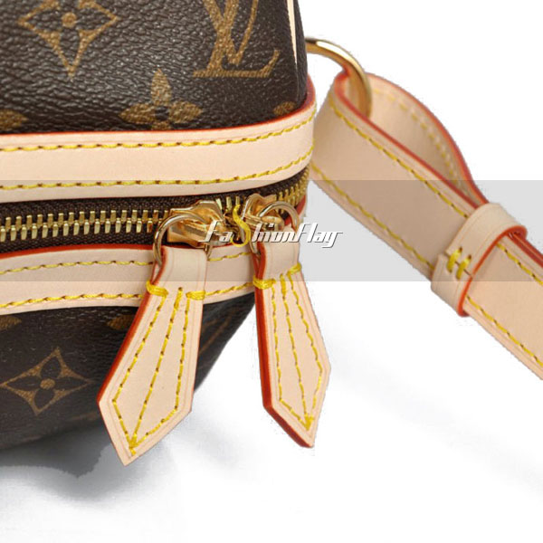 Louis-Vuitton-Monogram-Canvas-Sofia-Coppola-Bag-d