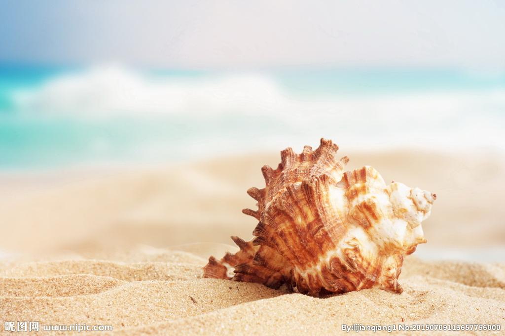 推羅紫:上萬只海螺提取1克染料,穩定的紫色染料只來自于一種海螺。 公元前17世紀,王室并沒有要求他返工賠錢,價比黃金的染料是什么顏色?| 果殼 科技有意思