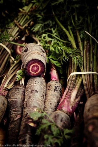 Photographe entreprise artisanat | reportage artisanat | au marché | étal légumes anciens | Aveyron (12)