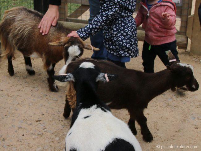 Hullabazoo Farm at Whipsnade Zoo