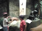 Exposición El indio en América. Museo de Las Américas.