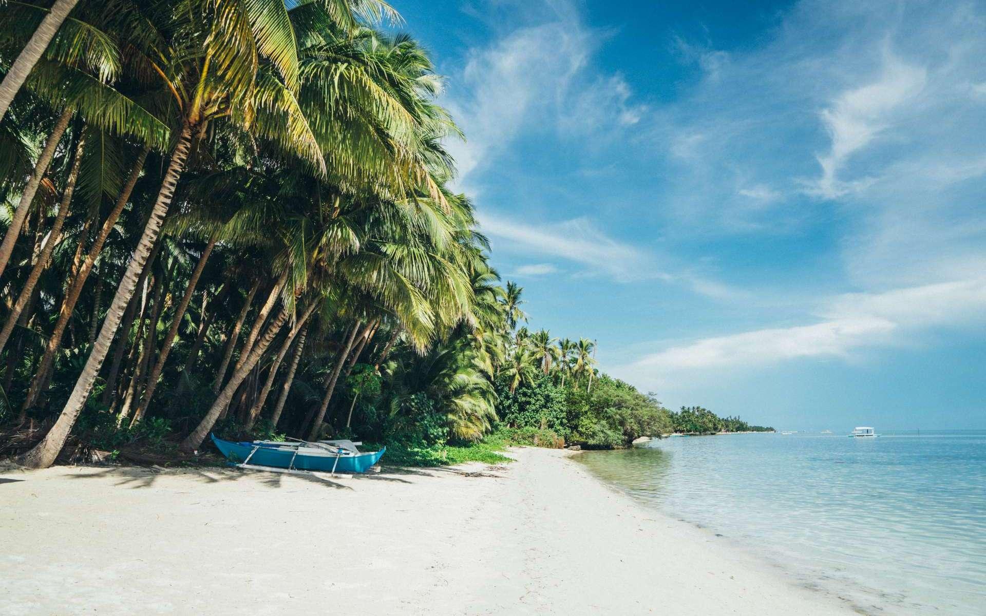 PICCSI, beach, Cervix Cancer, Cervical Cancer. PICCSI (Pacific Island Cervical Cancer Screening Initiative). Nicola Fitzgerald
