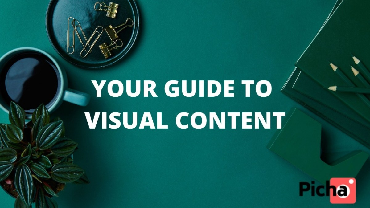 Picha Guides; Images, videos, infographics, memes, and influencer posts and the great visual content companies should focus on