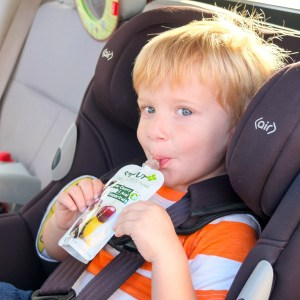 6 Handy Healthy Eating Tips for Families On the Go