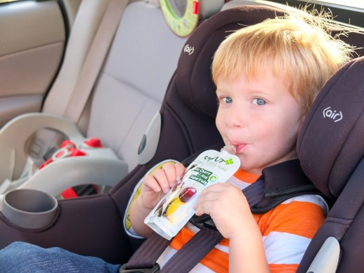 Healthy Eating Tips for Families On the Go