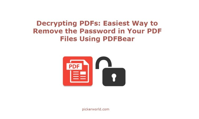 Decrypting PDFs: Easiest Way to Remove the Password in Your PDF Files Using PDFBear