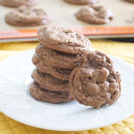 Chocolatey Chocolate Chip Cookies