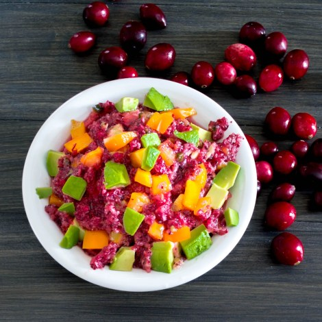 Cranberry Avocado Salsa | Pick Fresh Foods-2