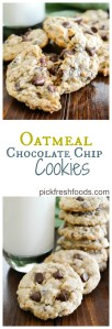 Oatmeal Chocolate Chips Collage