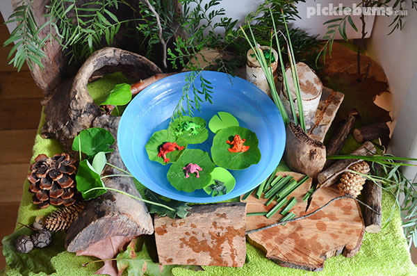 Small Frog Pond Ideas