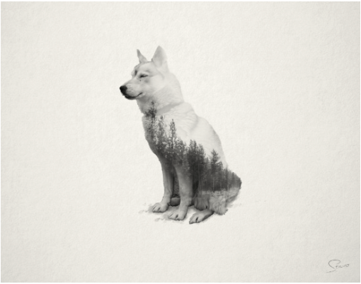 Image from How Far From Home on Society 6.
