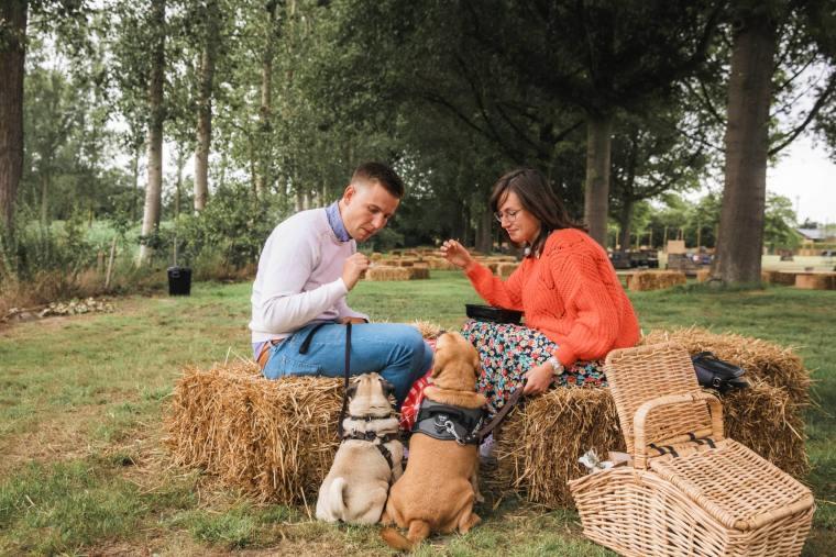 PicknickPoint-foto-picknicken-met-honden-min