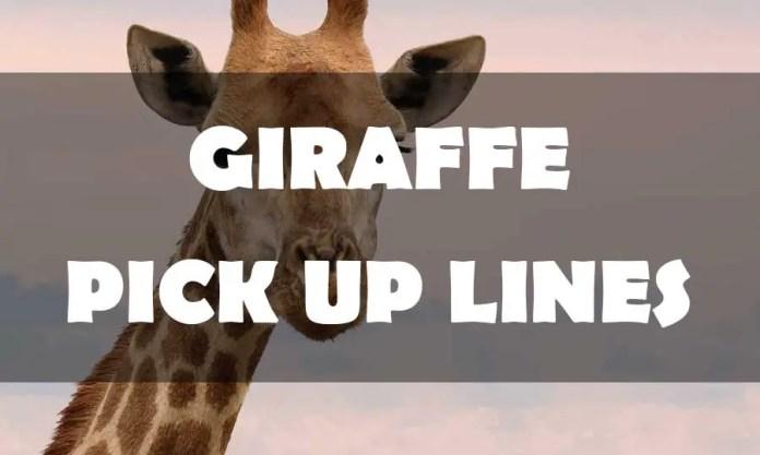 giraffe pick up lines
