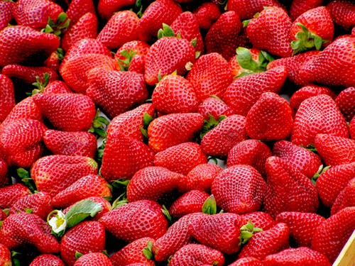 strawberry pick up lines