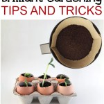 25 BriGardening, gardening hacks, gardening tips, easy gardening tips, popular pin, outdoor living, indoor gardening, easy gardening, organic gardening.lliant Gardening Tips and Tricks