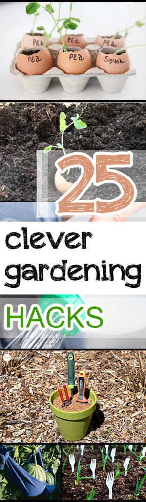25 Clever Gardening Hacks