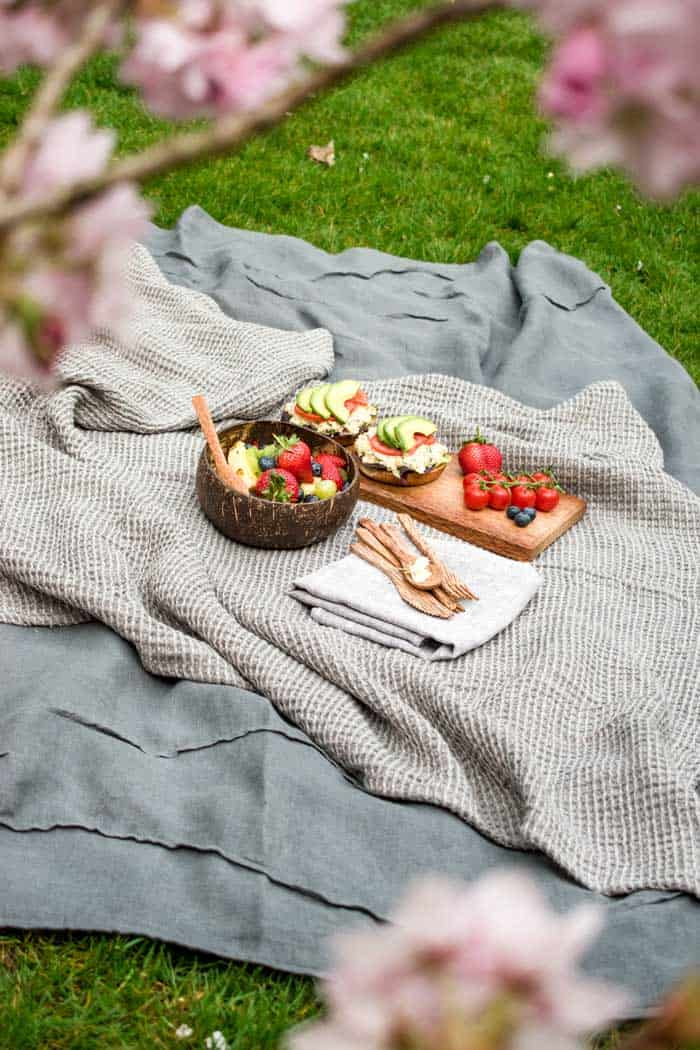 Picnic blanket on green grass with fruit salad and bagels laid out.